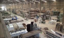 Bố trí chuyền cắt trong xưởng gỗ