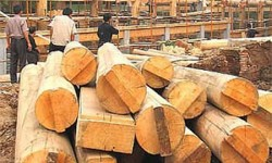 Quy trình sản xuất đồ gỗ tự nhiên